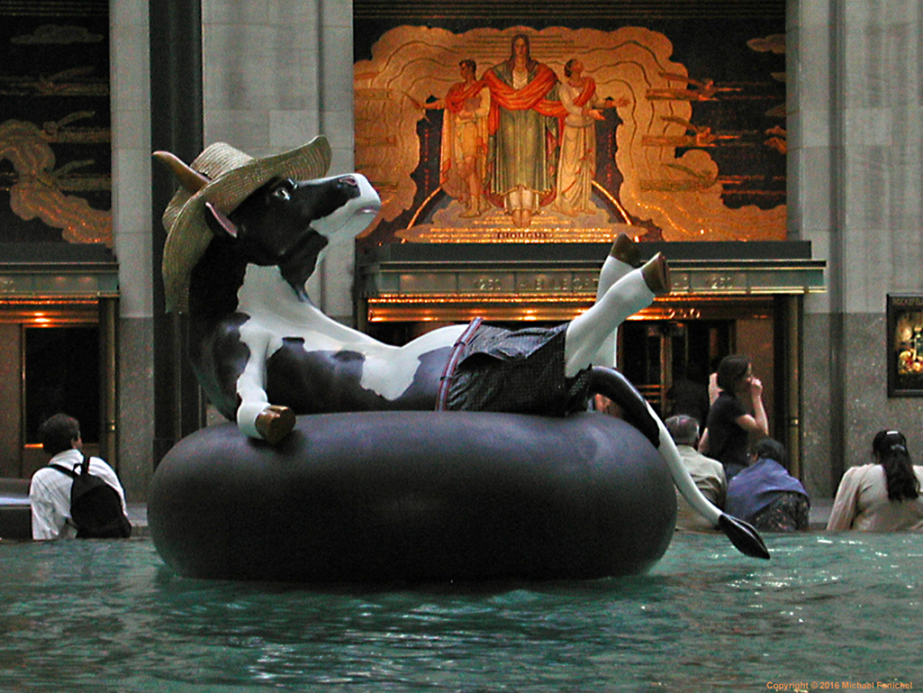 [Cool Cow - Floating on Rubber Tube]