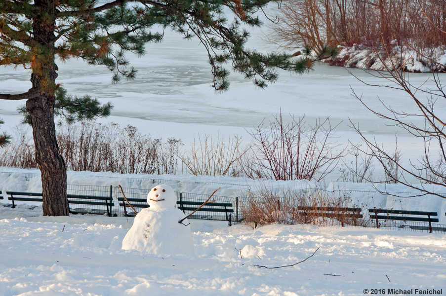 [Snowman in Central Park]